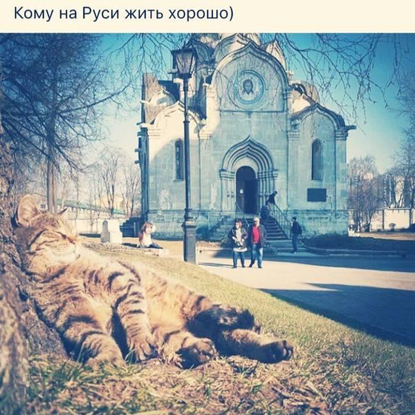 http://sg.uploads.ru/t/wDuZ0.jpg