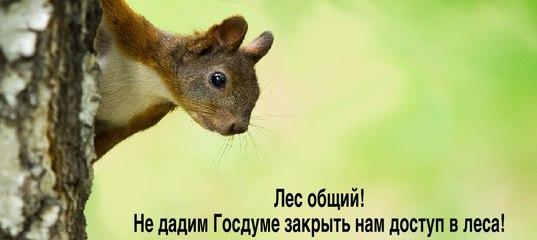 http://sg.uploads.ru/t/xJDY5.jpg