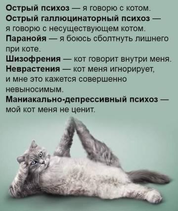 http://sg.uploads.ru/t/xmlvX.jpg
