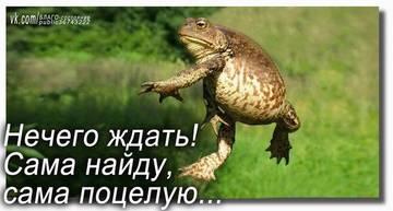 http://sg.uploads.ru/t/xohzJ.jpg