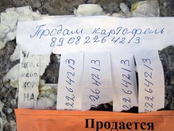 http://sg.uploads.ru/t/yOKwG.jpg