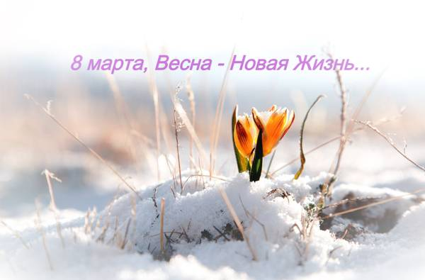 http://sg.uploads.ru/t/yTiRH.jpg