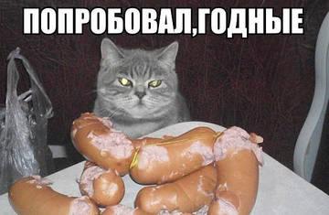 http://sg.uploads.ru/t/yf4At.jpg