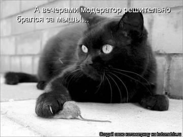 http://sg.uploads.ru/t/ytBVK.jpg