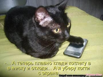 http://sg.uploads.ru/t/ytuaU.jpg