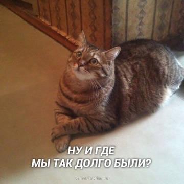 http://sg.uploads.ru/t/zPRv2.jpg