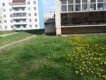 http://sg.uploads.ru/t/zbIw3.jpg