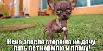 http://sg.uploads.ru/t/zkfGT.jpg