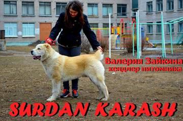 http://sg.uploads.ru/t/zlTKb.jpg