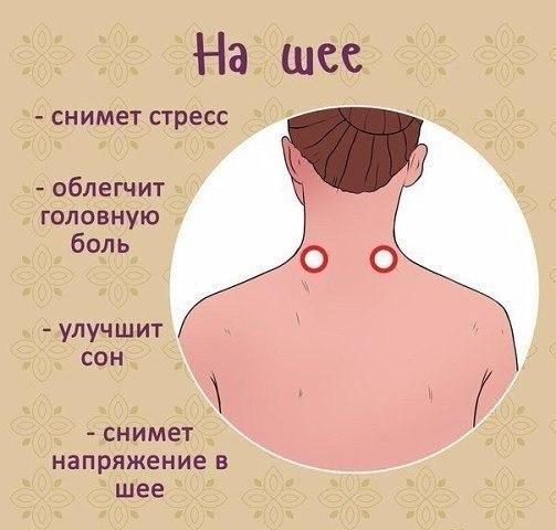 http://sg.uploads.ru/tknjR.jpg