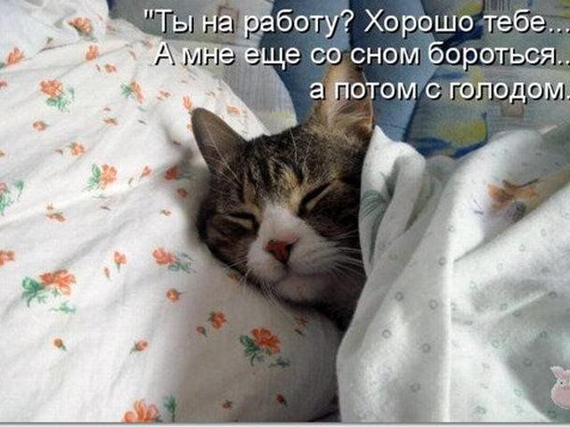 http://sg.uploads.ru/uJFDy.jpg