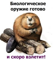 http://sg.uploads.ru/uhyYs.jpg