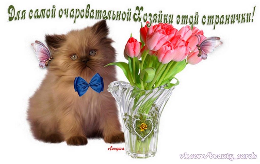 http://sg.uploads.ru/vAUfg.jpg