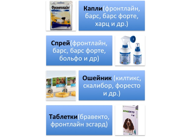 http://sg.uploads.ru/xniOU.jpg