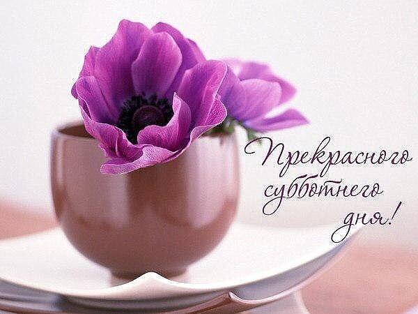 http://sg.uploads.ru/xuXPU.jpg