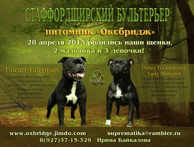 http://sg.uploads.ru/yWKTm.jpg