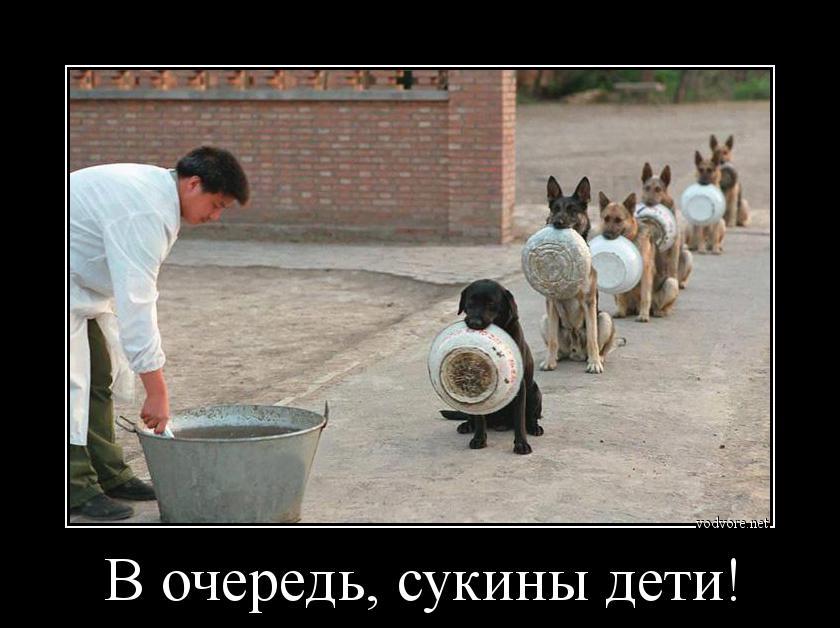 http://sg.uploads.ru/zj9rm.jpg