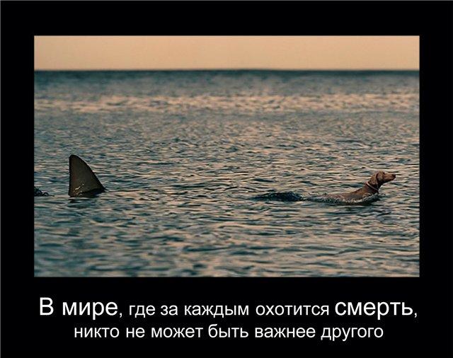 http://sg.uploads.ru/2Qcoj.jpg