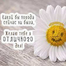 http://sg.uploads.ru/48BGX.jpg