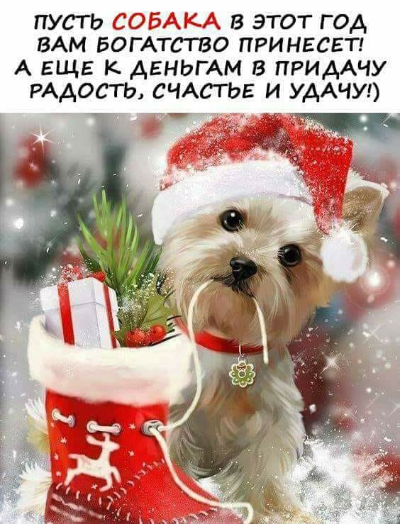 http://sg.uploads.ru/AGH4s.jpg