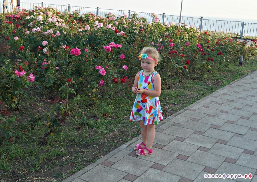 http://sg.uploads.ru/CAv6P.jpg