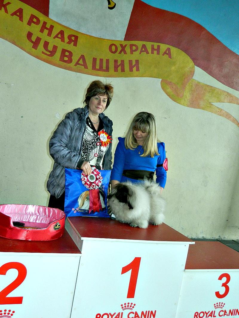 http://sg.uploads.ru/Fj0eS.jpg