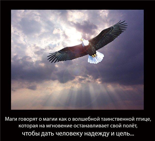 http://sg.uploads.ru/HsNAW.jpg