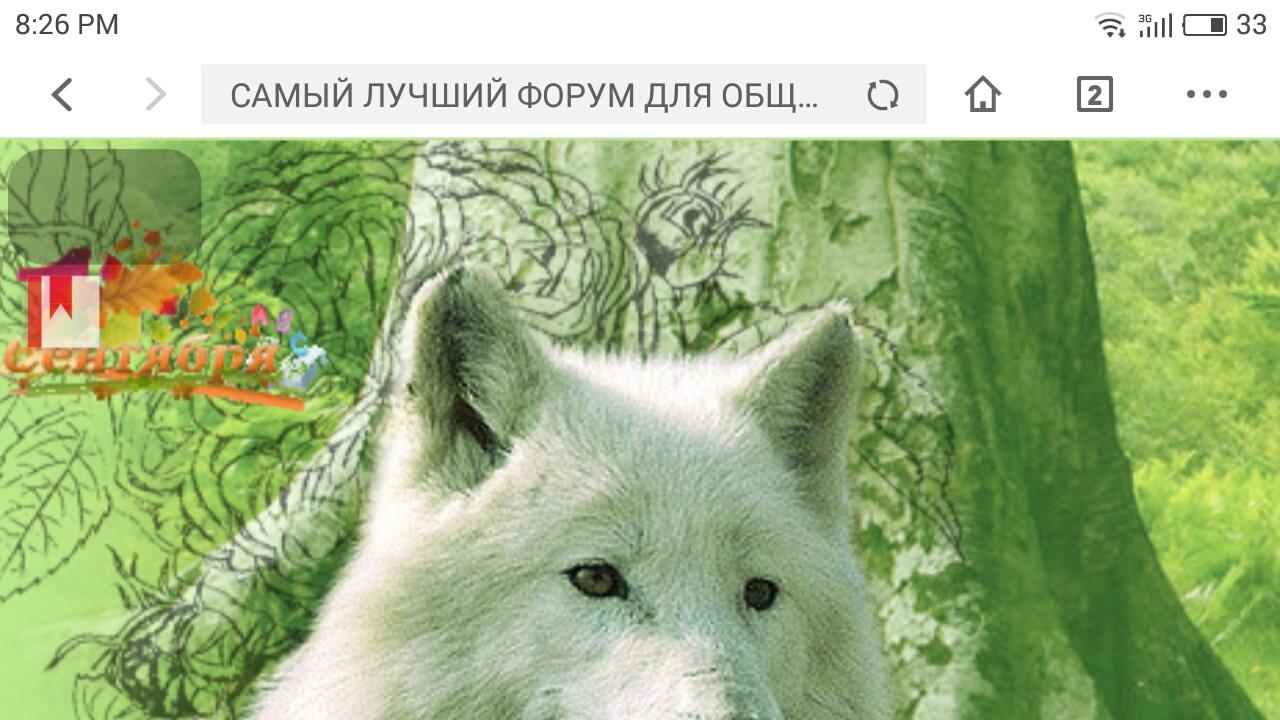 http://sg.uploads.ru/INuB7.jpg