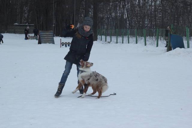 http://sg.uploads.ru/LJoUX.jpg