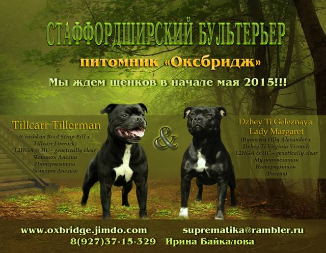 http://sg.uploads.ru/MfoY6.jpg