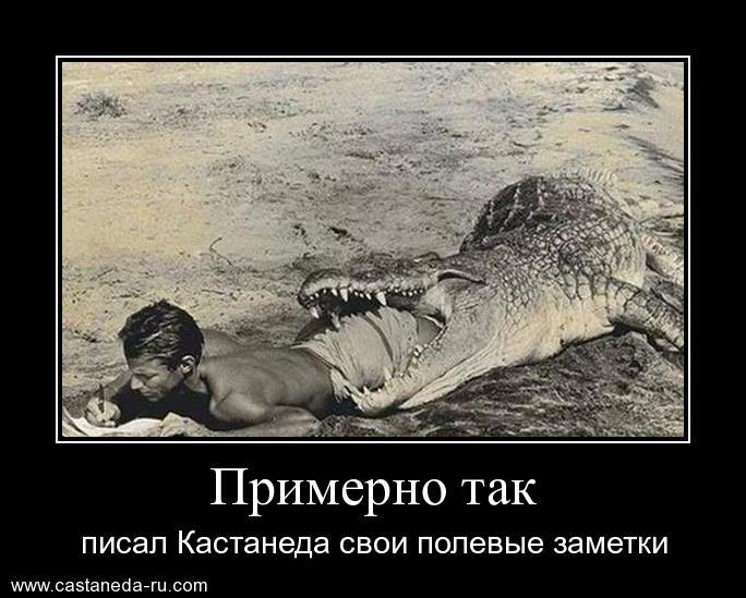 http://sg.uploads.ru/NMYkC.jpg
