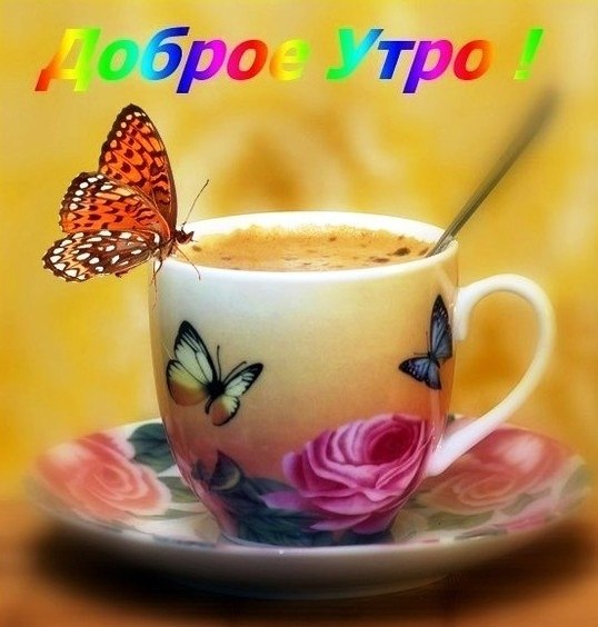 http://sg.uploads.ru/QtbRx.jpg