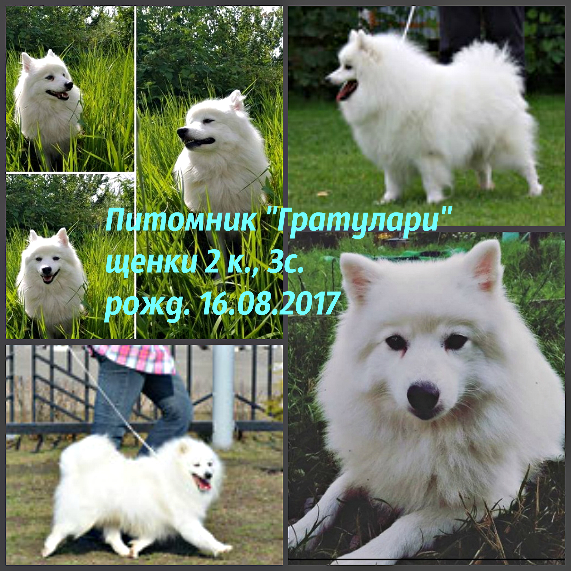 http://sg.uploads.ru/UO2B6.jpg