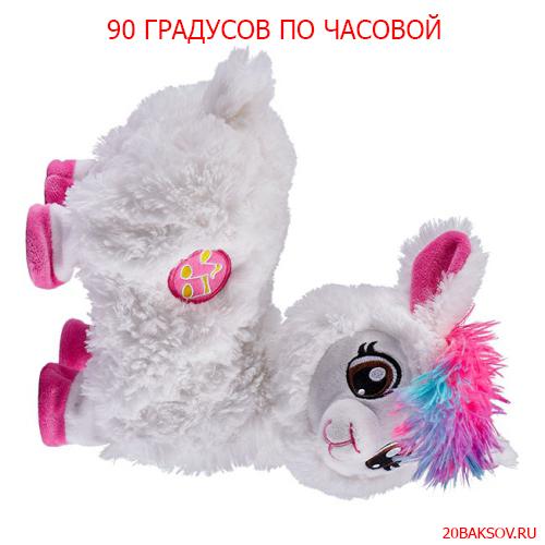 http://sg.uploads.ru/YBA49.jpg