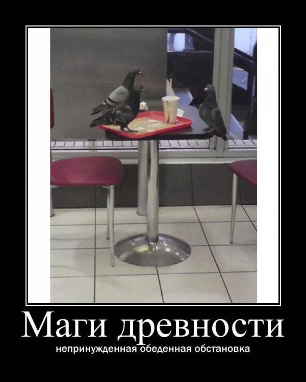 http://sg.uploads.ru/bFjUI.jpg