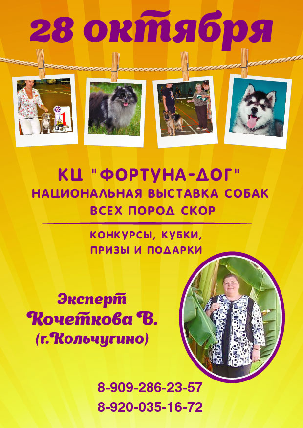 http://sg.uploads.ru/dOuqX.jpg