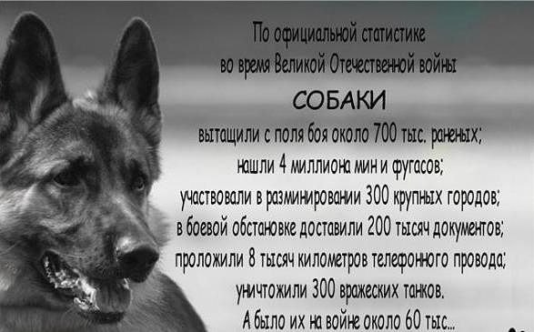 http://sg.uploads.ru/fFU2V.jpg
