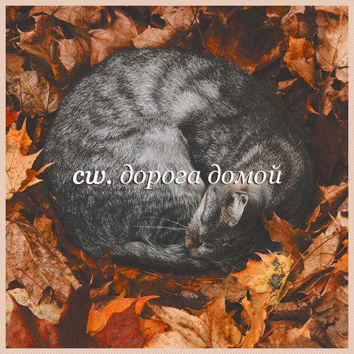 http://sg.uploads.ru/jQU1g.png
