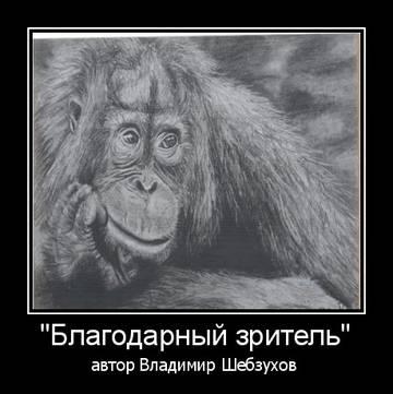 http://sg.uploads.ru/t/2ObHs.jpg