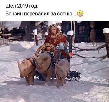 http://sg.uploads.ru/t/2pnPc.jpg