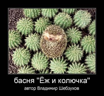 http://sg.uploads.ru/t/2uXjK.jpg