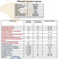 http://sg.uploads.ru/t/3MnoI.png