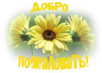 http://sg.uploads.ru/t/5dXi6.jpg