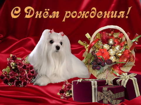 http://sg.uploads.ru/t/9nGOV.jpg
