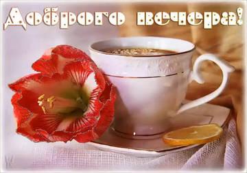 http://sg.uploads.ru/t/9rfHn.jpg