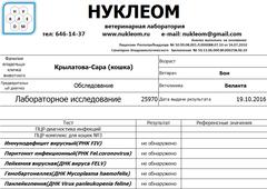 http://sg.uploads.ru/t/Arm8M.png