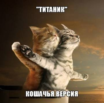 http://sg.uploads.ru/t/EfuIt.jpg