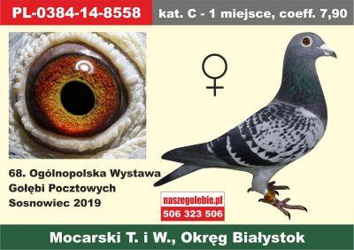 http://sg.uploads.ru/t/G39TX.jpg