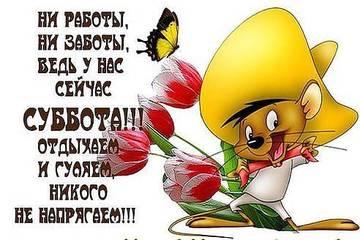 http://sg.uploads.ru/t/GK710.jpg