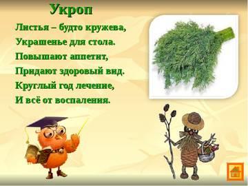 http://sg.uploads.ru/t/GroSD.jpg
